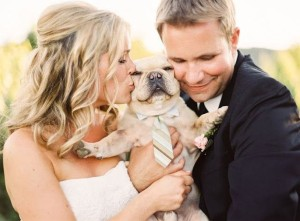 sposi baciano il loro cane