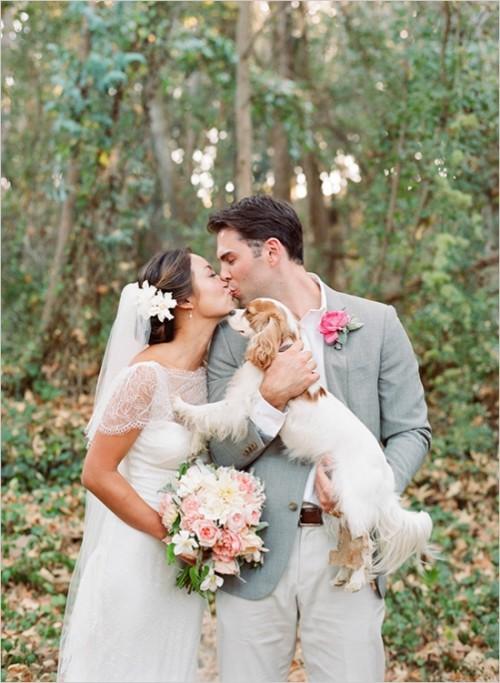 wedding dog sitter sposi con setter