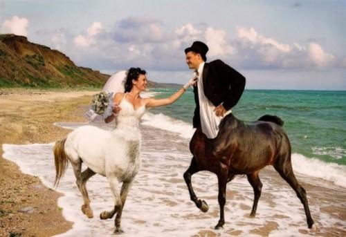 Le foto di nozze più divertenti del web scelte da Coi Fiocchi_centauri