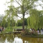 Matrimonio Green: nozze ecologiche e solidali
