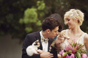 matrimonio-col-gatto-quando-le-nozze-si-fanno-graffianti-copertina