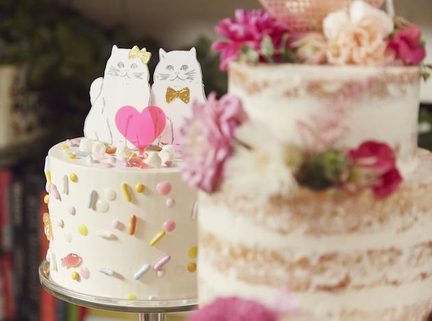 matrimonio-col-gatto-quando-le-nozze-si-fanno-graffianti-torta-con-gatti-Josh-Madson-Photography-Happily-Bridal-Musings-Wedding-Blog-1
