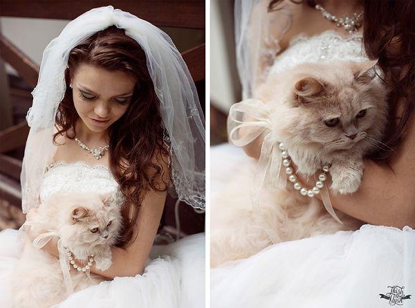 matrimonio-col-gatto-quando-le-nozze-si-fanno-graffianti-sposa-con-gatto