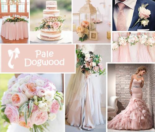 matrimonio-2017-i-dieci-colori-moda-primavera-estate-di-pantone-pale-dogwood
