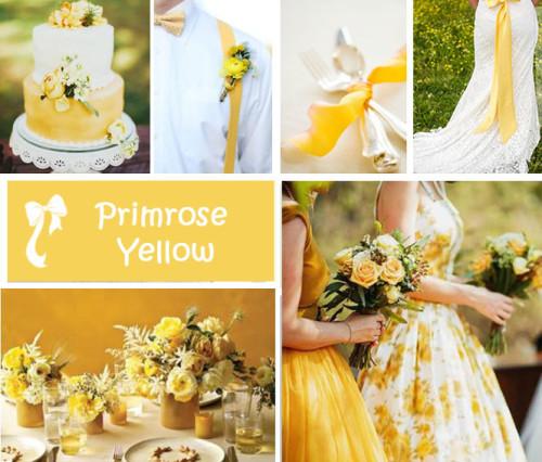 matrimonio-2017-i-dieci-colori-moda-primavera-estate-di-pantone-primrose-yellow