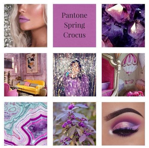 Spring-Crocus_Staci-Hattan