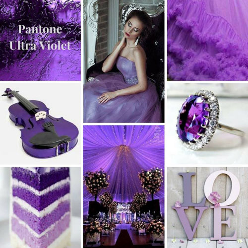 Ultra-Violet_Florcita-Gonzalez
